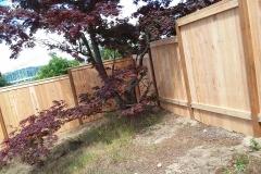 Wooden fence tacoma narrows
